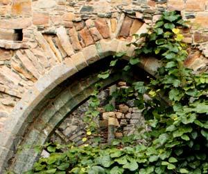 Ouverture en ogive à l'abbaye