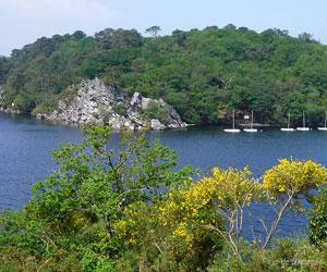 Lac de Guerlédan