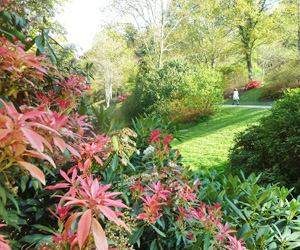 Parc du conservatoire botanique de Brest