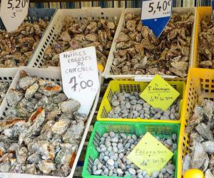 Huîtres de Cancale au marché